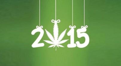 2015-annee-cannabis-750x410