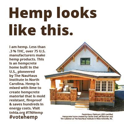 hemp look slike this
