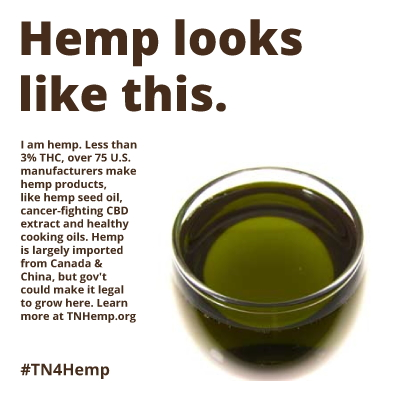 What Does Hemp Mean To Humboldt Q A With Local Hemp Advocate And